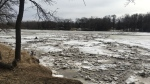 Ice remains along the Red River in south Winnipeg on March 30, 2017. (Photo: Katherine Dow/CTV Winnipeg)
