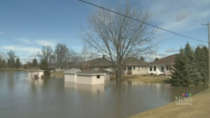 Flooding is seen in Carman, Man. on April 2, 2017.