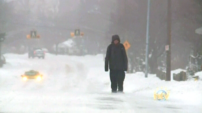 Texting While Driving >> Newfoundland hit by spring storm that's dumping snow ...