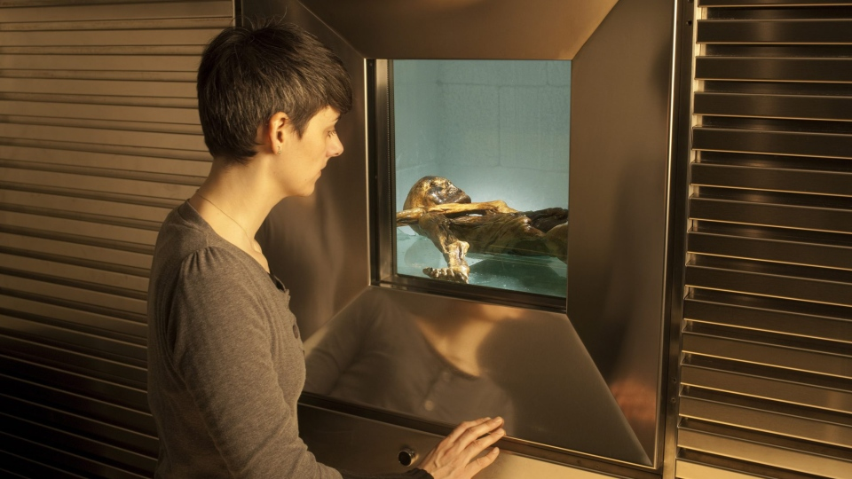 A woman looks through a window into the Iceman's refrigerated cell. (South Tyrol Museum of Archaeology / Ochsenreiter)
