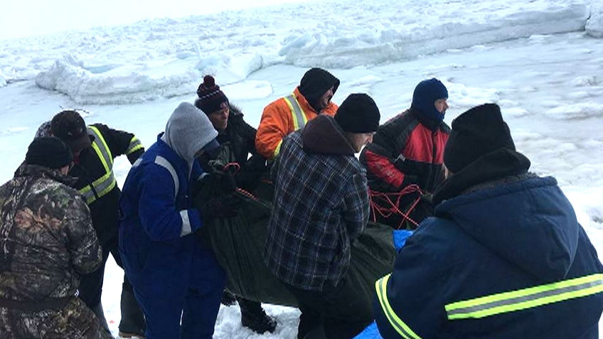 Newfoundlanders are seen attempting to rescue dolphins near Lance Cove. (Credit: Leila Beaudoin / NTV News)