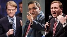 Chris Alexander, Deepak Obhrai, Brad Trost