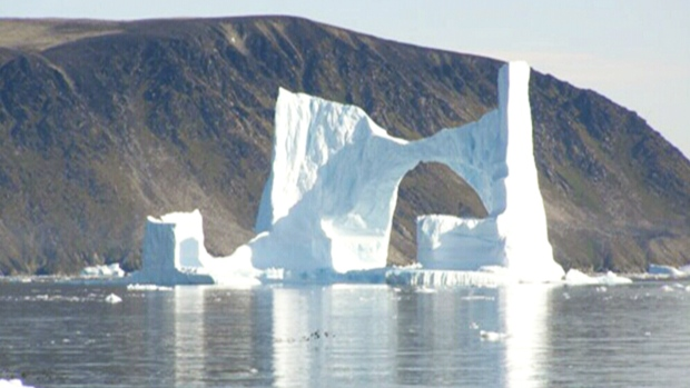 CTV News Channel: A large number of icebergs