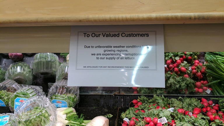 A sign advising of lettuce shortages at a Valu-Mart in North York, Ont. on April 10, 2017. (Mary Nersessian/ CTVNews.ca)