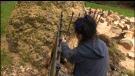 Sawatsky Sign-Off: Cutting Wood