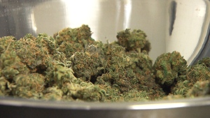 CTV News: Frist step to marijuana legalization