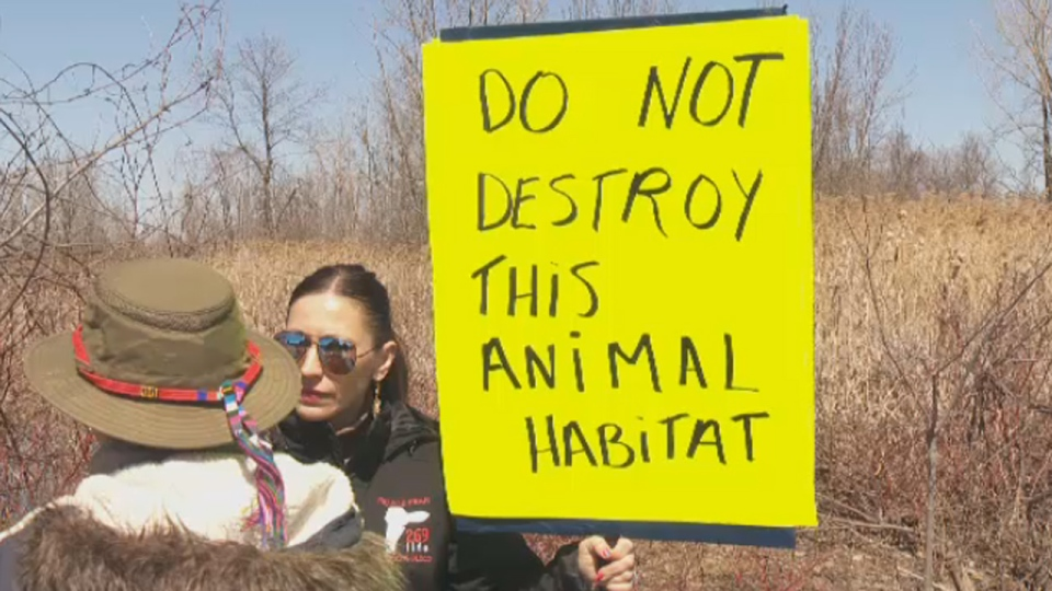 A woman holds a sign in support of the wetlands in St. Laurent (April 14, 2017)