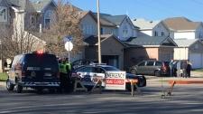 Hidden Creek Drive child struck car
