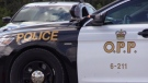 Two Ontario Provincial Police cruisers are seen in this undated file photo.