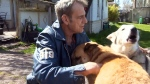 B.C. man reunited with dogs stolen outside grocery
