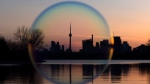 The Toronto skyline is seen through a soap bubble on Friday, April 14, 2017. (THE CANADIAN PRESS / Frank Gunn)