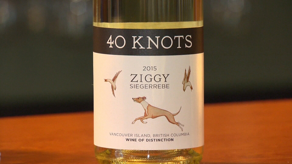 "The family-run 40 Knots Vineyard and Estate Winery sells a popular local wine called ""Ziggy,"" named after their whippet. Apr. 17, 2017 (CTV Vancouver Island)"