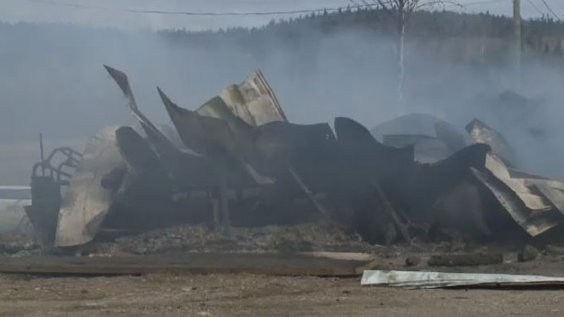 A barn is destroyed and close to 200 pigs and chickens are dead following a fire in Harvey, N.B.