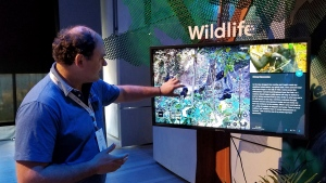 Lilian Pintea, chief scientist with the Jane Goodall Institute, demonstrates features on Google Earth, Tuesday, April 18, 2017, in New York. (AP Photo/Anick Jesdanun)