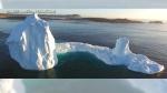 Iceberg in Newfoundland draws hundreds of tourists