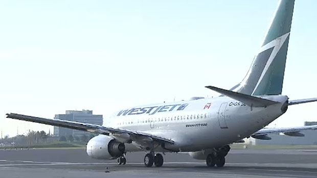 Calgary-based WestJet says its new, cheaper, airline will take to the skies sometime later this year.