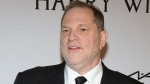 In this Feb. 10, 2016 file photo, Harvey Weinstein attends amfAR's New York Gala honoring Harvey Weinstein at Cipriani Wall Street in New York. Weinstein knows he can be temperamental, and he knows he's not above a good publicity stunt, but he said Thursday, April 20, 2017, his complaints over an R rating for his company's upcoming trans teen family story '3 Generations' are worth the effort on behalf of prospective young trans viewers. (Photo by Charles Sykes / Invision / AP, File)