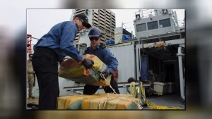Eleven bales of cocaine weighing 464 kilograms were seized and three suspected smugglers were arrested. (Photo: DND)