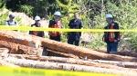 Vancouver Island train derailment claims 3 lives