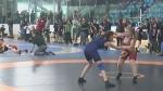 CTV Barrie: Wrestling festival
