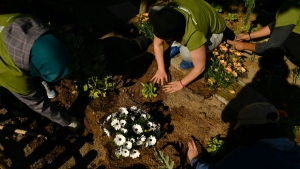 Members of an ecologist group known as 'Comando Borraja' (Borage Commando), plant some vegetables and flowers in a street of Tudela village, northern Spain, Saturday, April 22, 2017, coinciding with Earth Day. (AP Photo/Alvaro Barrientos)