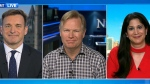 CTV News Channel: Possible softwood lumber battle