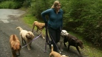 Dog walkers targeted by CRD following complaints