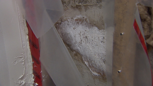 Frank Loughrey said he's unhappy with the repairs the builder of his townhouse made when the basement leaked.