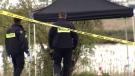 Murder investigation at park