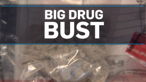Big Fentanyl Bust