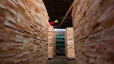 B.C. Liberal Leader Christy Clark tosses wood