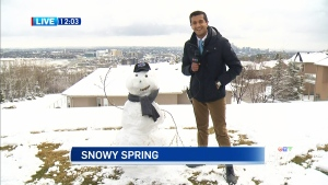 We are in the midst of another spring snowstorm and it's getting under the skin of Calgarians across the city. Kamil Karamali reports.