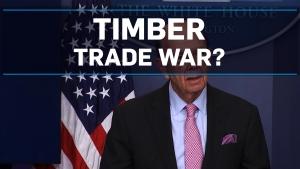timber trade war