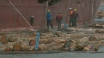 B.C. Forestry workers fear job cuts over lumber