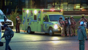 Firefighters and paramedics were called to the scene of an ammonia leak in St. Bruno (CTV Montreal/Cosmo Santamaria)