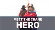 Crane Hero