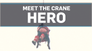 Crane Hero 2
