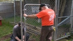 Volunteers building new fence for local SPCA