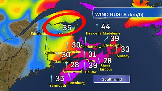 South wind everywhere, except where the wind has turned to the NE.   Here's why: