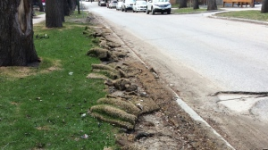 Contractors are responsible for repairing any damage done to curbs or lawns, but the cost of damages is built into their contracts with the city. (Josh Crabb/CTV Winnipeg)
