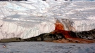 Blood Falls trickles into Lake Bonney from the edge of the Taylor Glacier in Antarctica in this file photo. (National Science Foundation)
