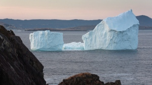 A large iceberg is shown near Fermeuse, N.L., on Monday, April 24, 2017. About 673 icebergs have drifted into shipping lanes off eastern Newfoundland so far this year.That's almost as many as were counted during the whole ice season last year, ending in late September. (THE CANADIAN PRESS / Paul Daly)