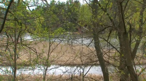 Police are investigating after a body was found in the Credit River on Saturday. (Peel Regional Police)