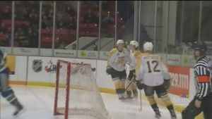 Wheat King favourite in NHL draft lottery