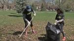 Volunteers rake leaves in a Montreal park.
