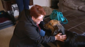 Rita Polnau-Szpakowski was reunited with her dog Gunther more than seven months after she sent him to live with another family in the hope that they could find a way to improve his failing health.