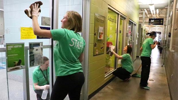 Calgary Humane Society reopens following parvovirus closure