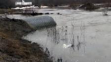 Sudbury flood