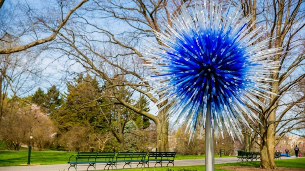 This April 13, 2017 photo provided by the New York Botanical Garden shows Sapphire Star which is part of the Chihuly exhibit at the New York Botanical Garden in New York. The show, titled simply 'Chihuly,' reveals the evolution of Dale Chihuly's work from 1980 to the present. (New York Botanical Garden via AP)