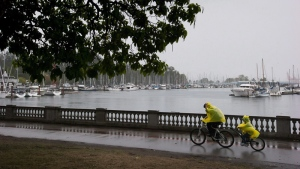 A man reaches to pull up the hood on a poncho as he and a child ride a tandem bike along the Stanley Park seawall during a rain storm in Vancouver, B.C., on Saturday August 29, 2015. THE CANADIAN PRESS/Darryl Dyck